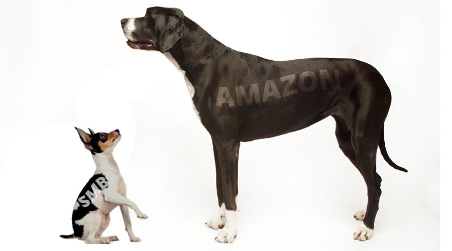 SMB vs Amazon